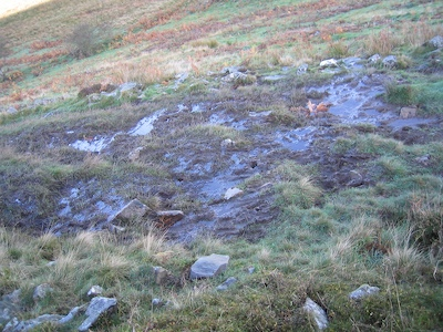 Bridleway with bad drainage problems Y Garth, Cilcain